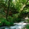 Fiumata  (Parco dei Monti Simbruini). Il Rio Corore, uno dei due torrenti da cui ha origine l'Aniene