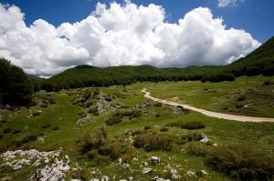 Campo della Pietra (1330 m)