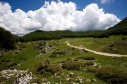 Campo della Pietra, Parco dei Monti Simbruini