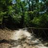 Jenne: Sentiero Mola Vecchia-Cascata di Trevi
