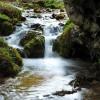 Fiumata (Parco dei Monti Simbruini), il torrente Rogliuso che insieme al Corore dà origine all'Aniene