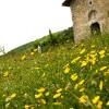 Jenne: La chiesa rurale di San Michele Arcangelo