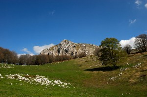 Monte Tarino (mt 1956) nel cuore del Parco dei Monti Simbruini