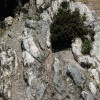 Cervara di Roma, la Montagna degli artisti per la Pace nel Mondo