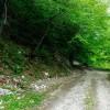 Camerata Vecchia Sentiero 664a