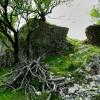 Camerata Vecchia, I ruderi della Rocca