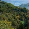 Riofreddo, pendici boscose dei Monti Lucretili