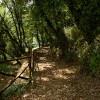 Roviano, sentiero naturalistico sul tracciato dell'antica Via Tiburtina Valeria