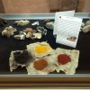museo-preistorico-percile-8211
