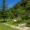 licenza-giardino-5-sensi-2597