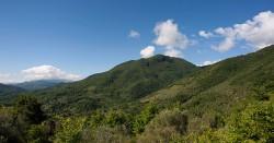 C-parco-monti-lucretili-9791