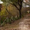 vicovaro-madonna-dei-ronci-2357