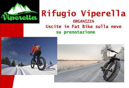 campo-sttaffi-fat-bike-02