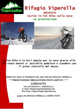 campo-sttaffi-fat-bike