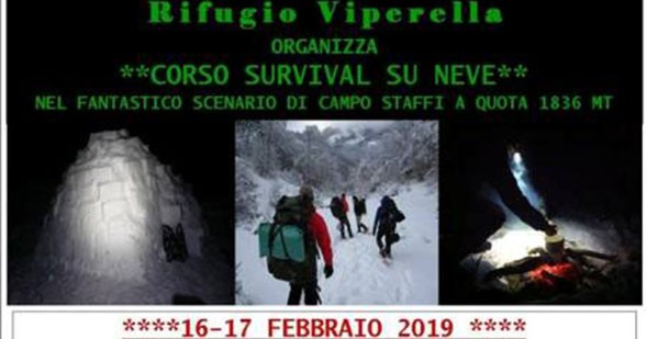 survival-viperella-02