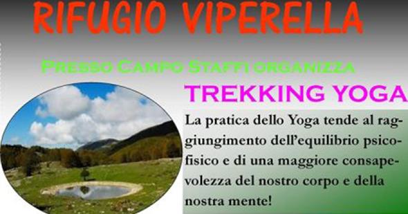 viperella-yoga-2