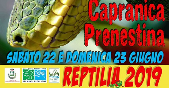 reptilia-capranica-prenestina-02