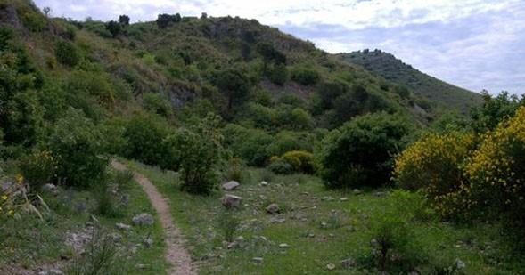 catillo-riserva