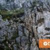 CERVARA-SIMBRUINI-GOTREK-ARTISTI