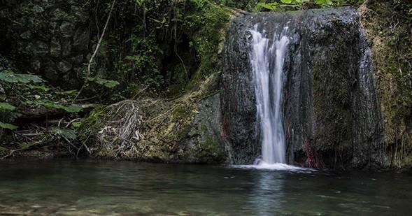 Coleman-rioscuro-mountains-are-calling